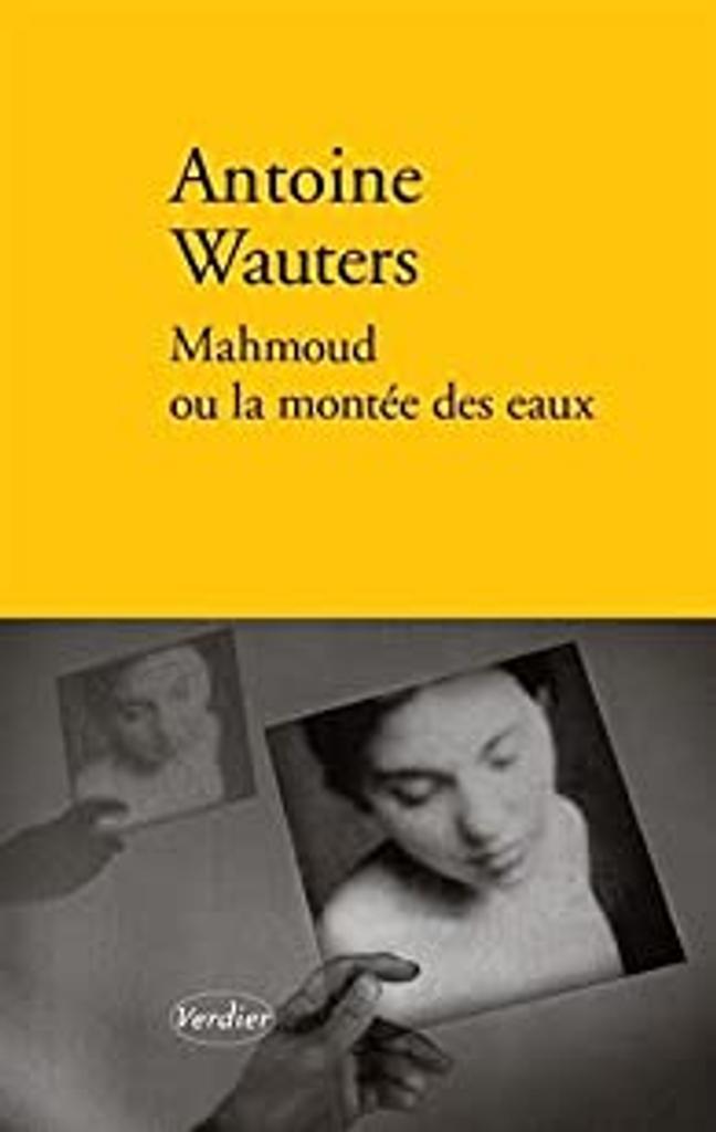 Mahmoud ou La montée des eaux : roman / Antoine Wauters  
